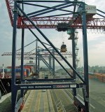 New York Container Terminal